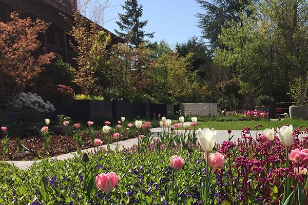 Les jardins de l'hôtel du Parc à Obernai