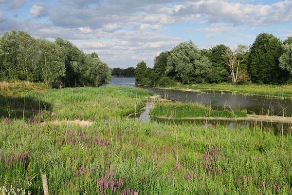 Parc du Peuple de l'Herbe à Carrière-sous-Poissy