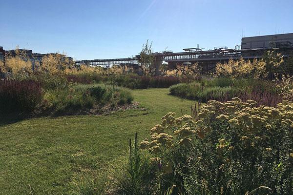 Renaissance écologique d'un site industriel à Vitry-sur-Seine