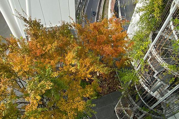 Les jardins suspendus de la tour Basalte à la Défense