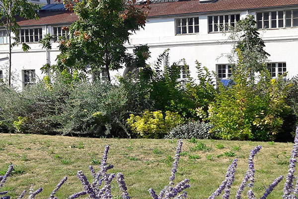Jardin de l'Hôpital Necker Pôle Mère Enfant