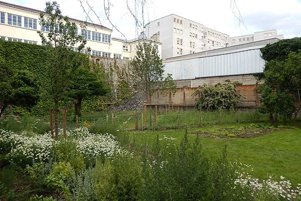 Jardin du 38 rue de la Chapelle