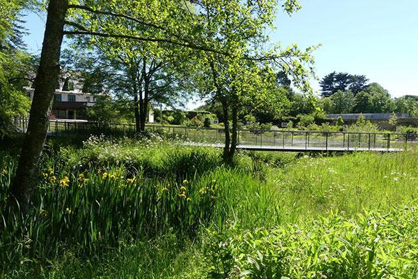 Jardin des Arbres Médicinaux, Abbaye de Daoulas