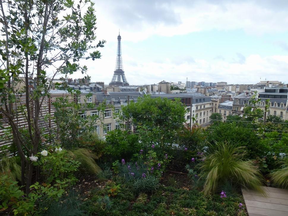 1 jardin de ville balcons et terrasses les victoires for Jardin 500m2
