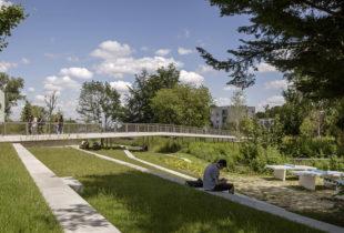 JARDIN ARGENTE, PARIS-SACLAY (91) - D'ICI LA paysagistes concepteurs - Photographie © Pierre-Yves BRUNAUD _  Programme: Aménagement d'un parc naturel urbain naturel et d'une passerelle  LE PROJET  D'une superficie d'un peu plus d'1 ha, le jardin argenté est un élément clé du projet urbain mené par OMA et D'ICI LA sur le quartier du Moulon. L'agence a suivi la maîtrise d'oeuvre de cet espace qui est devenu un élément stratégique des parcours dans le quartier. Dans l'évolution du quartier, il permettra notamment de proposer des liaisons douces efficaces entre l'école Centrale Supélec et le futur métro ligne 18.  Ce jardin illustre les fondamentaux du projet de territoire du Moulon (40 ha), mené en échange avec Michel Desvigne sur la stratégie générale du plateau (3000 ha): conserver et valoriser ce qui peut l'être, mettre en scène la capacité de jardin inondable (rétention des pluies de l'Ecole Centrale entre la vingtenale et la cinquantenale) et proposer un jardin à l'atmosphère champêtre qui soit confortable pour les étudiants.  Maître d'ouvrage: Etablissement public Paris-Saclay  Equipe: D'ICI LA paysagistes concepteurs (mandataire), Alto Step (B.E.T VRD), GMGB (B.E.T structure), Biodiversita (écologue)  Lieu: Gif-sur-Yvette, plateau de Saclay (91)  Superficie: 5 000 m²